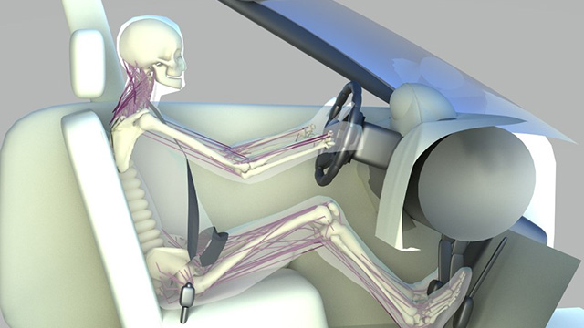 Active human driving simulation